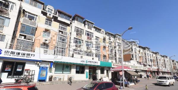河东区租房_恋日风景 精装大两室 中间楼层 临近地 铁