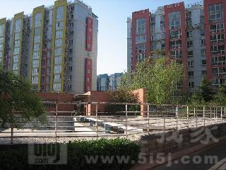 黄村镇兴华路兴政西口,兴政家园,二室一厅一卫,南北,83平米,图片