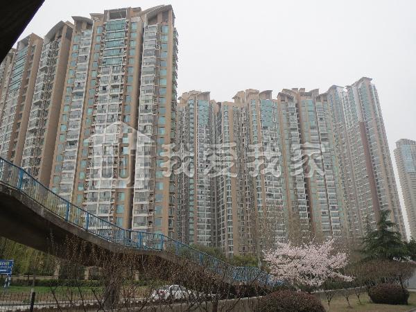 世茂滨江新城图片