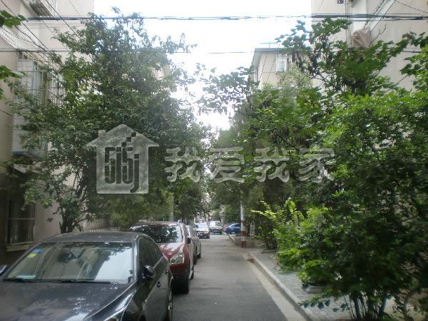 东井村图片