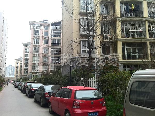 南方花园枫彩园图片