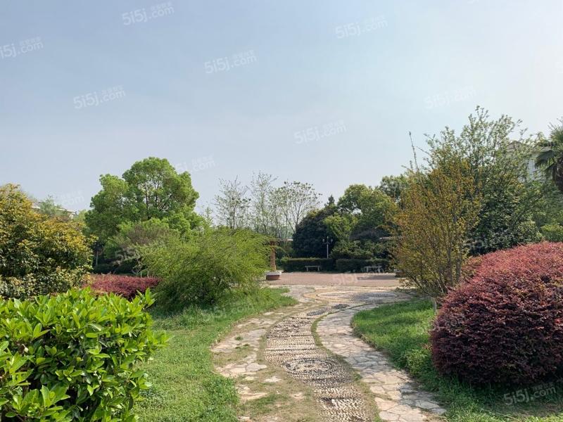 锦绣花园图片