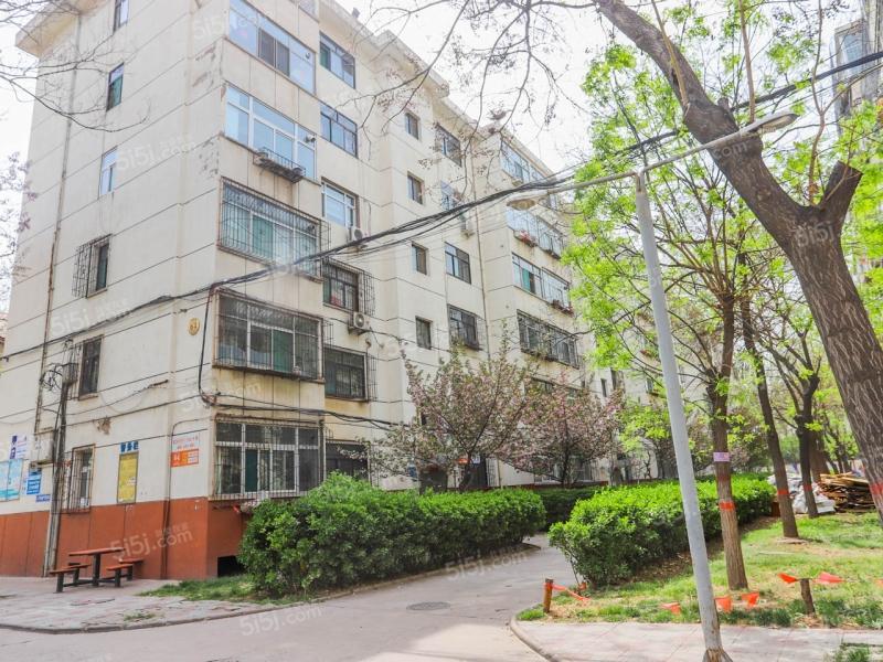 平阳路西一巷紫竹苑图片