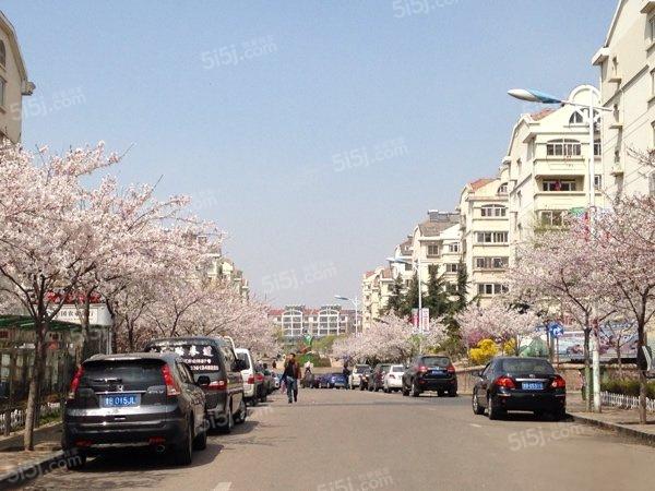 青岛我爱我家翠湖小区第2张图