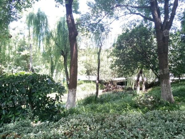 蓝天花园二期