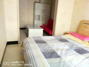 长风街体育西路精装一居室看房方便全家壁纸空调亲凤苑南区