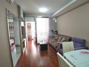 万象城旁高档公寓精装两房,随时入住