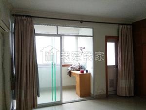 东葛葛村路  精装3房 超大客厅和厨房  双阳台