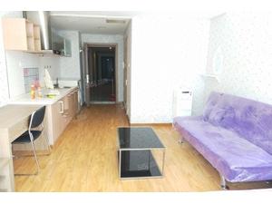 奥城酒店式公寓 交通便利 物业成熟 价位可议
