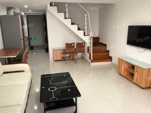 新出炉的公寓 低于市场价 便宜出租